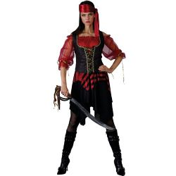 Swashbuckler Pirate Costume (EF2082)